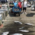 081618 Ocean City Fishing Report
